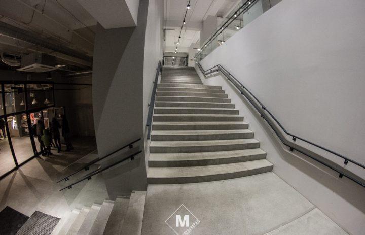 ant-studija-04-laiptai-2