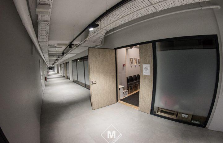 ant-studija-05-durys